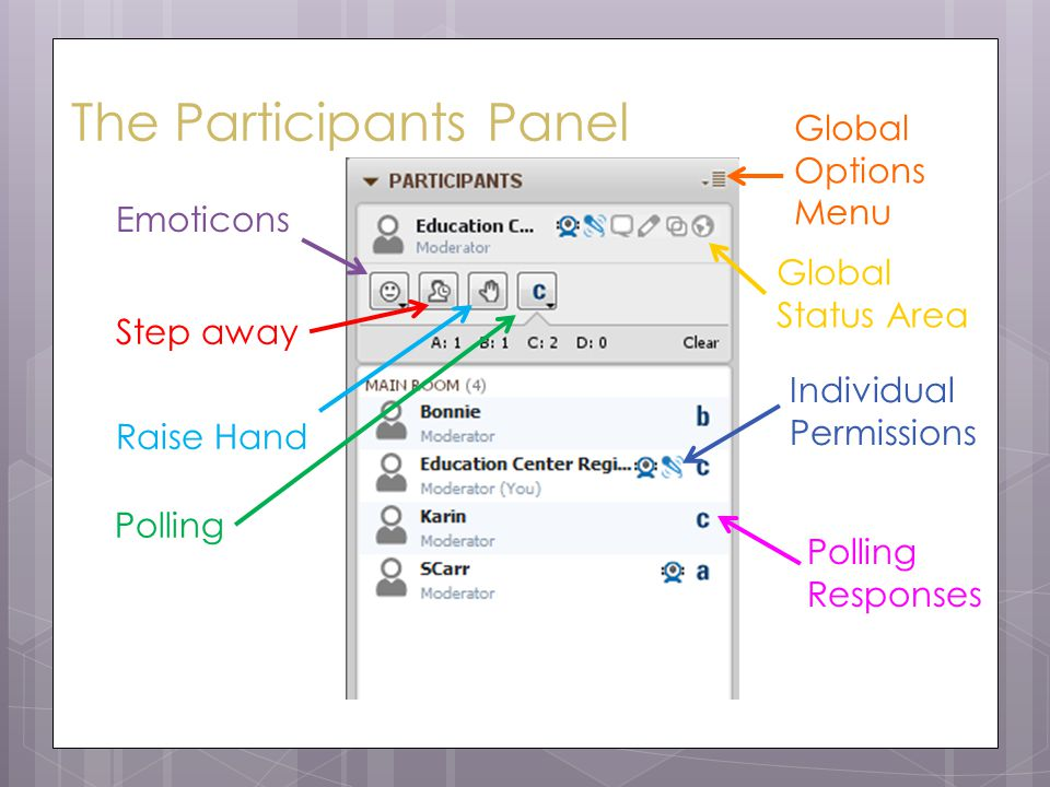 The Participants Panel Emoticons Step away Raise Hand Polling Global Options Menu Individual Permissions Polling Responses Global Status Area