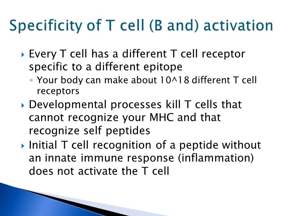  Every T cell has a different T cell receptor specific to a different epitope ◦ Your body can make about 10^18 different T cell receptors  Developmental processes kill T cells that cannot recognize your MHC and that recognize self peptides  Initial T cell recognition of a peptide without an innate immune response (inflammation) does not activate the T cell