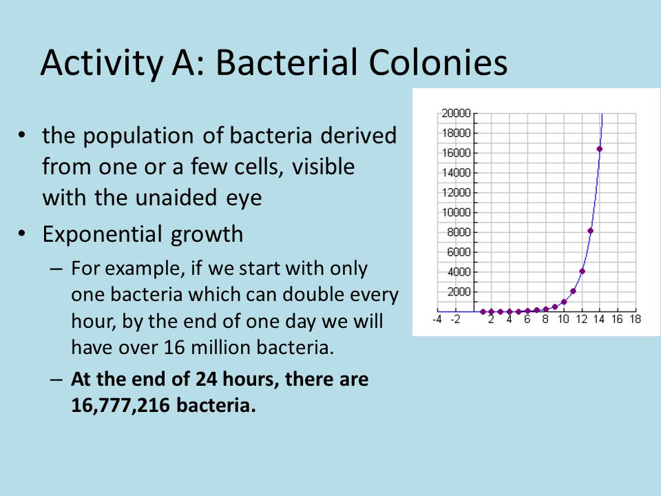 Activity A: Bacterial Colonies the population of bacteria derived from one or a few cells, visible with the unaided eye Exponential growth – For example, if we start with only one bacteria which can double every hour, by the end of one day we will have over 16 million bacteria.