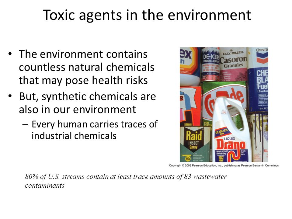 Toxic agents in the environment The environment contains countless natural chemicals that may pose health risks But, synthetic chemicals are also in o