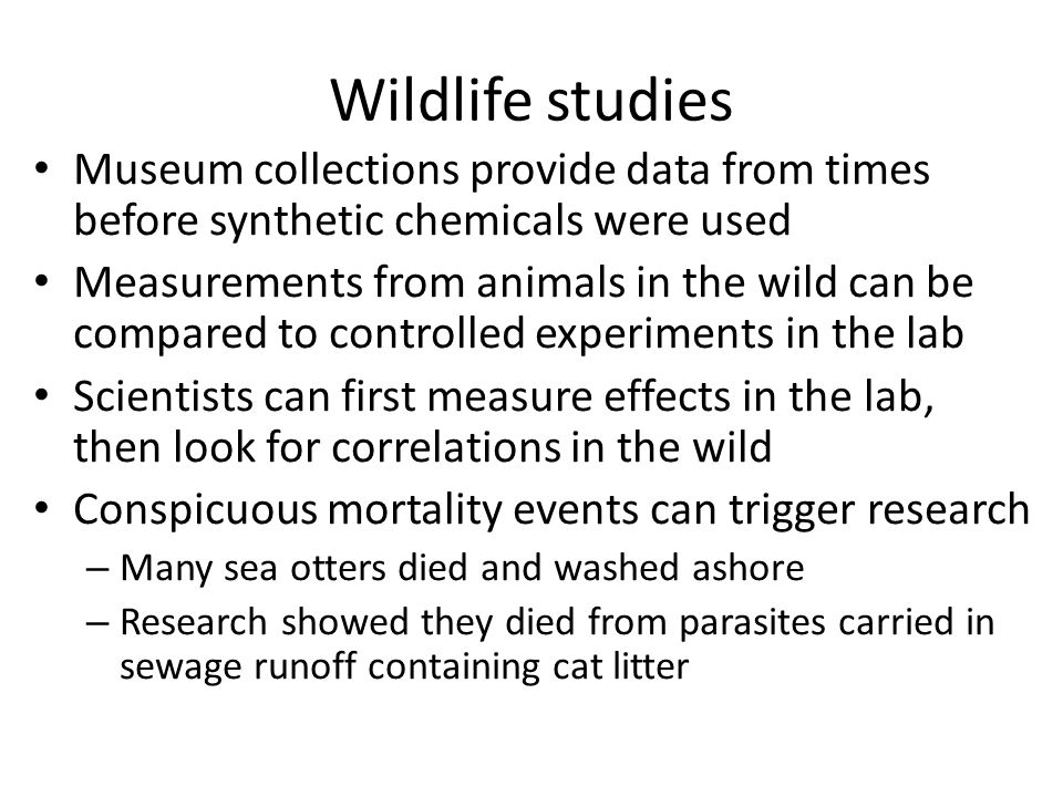 Wildlife studies Museum collections provide data from times before synthetic chemicals were used Measurements from animals in the wild can be compared