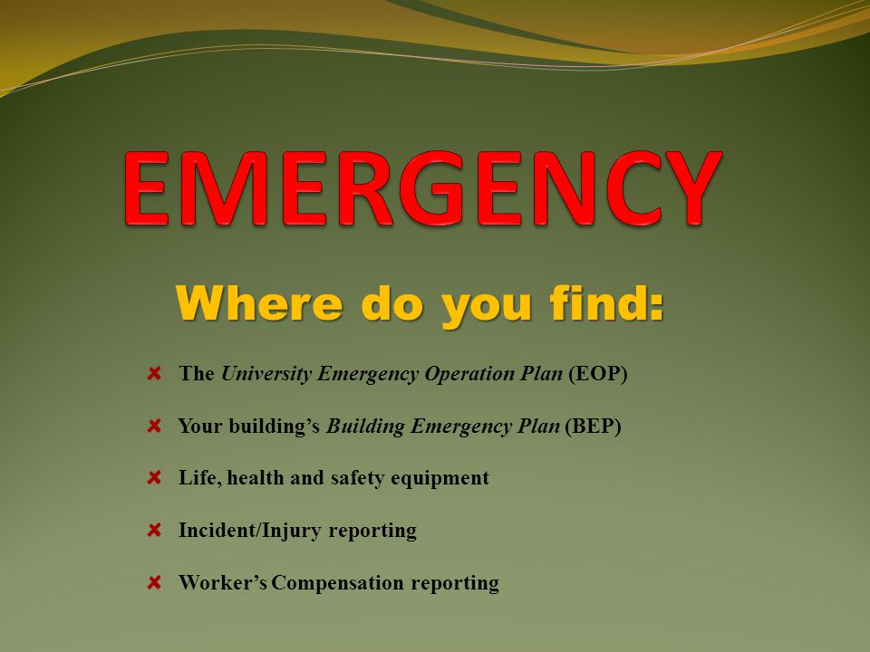 Where do you find: The University Emergency Operation Plan (EOP) Your building's Building Emergency Plan (BEP) Life, health and safety equipment Incid