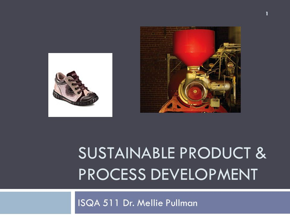SUSTAINABLE PRODUCT & PROCESS DEVELOPMENT ISQA 511 Dr. Mellie Pullman 1