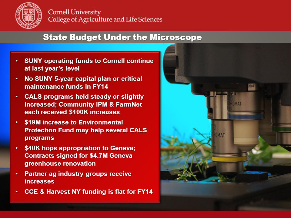 State Budget Under the Microscope SUNY operating funds to Cornell continue at last year's levelSUNY operating funds to Cornell continue at last year's level No SUNY 5-year capital plan or critical maintenance funds in FY14No SUNY 5-year capital plan or critical maintenance funds in FY14 CALS programs held steady or slightly increased; Community IPM & FarmNet each received $100K increasesCALS programs held steady or slightly increased; Community IPM & FarmNet each received $100K increases $19M increase to Environmental Protection Fund may help several CALS programs$19M increase to Environmental Protection Fund may help several CALS programs $40K hops appropriation to Geneva; Contracts signed for $4.7M Geneva greenhouse renovation$40K hops appropriation to Geneva; Contracts signed for $4.7M Geneva greenhouse renovation Partner ag industry groups receive increasesPartner ag industry groups receive increases CCE & Harvest NY funding is flat for FY14CCE & Harvest NY funding is flat for FY14 SUNY operating funds to Cornell continue at last year's levelSUNY operating funds to Cornell continue at last year's level No SUNY 5-year capital plan or critical maintenance funds in FY14No SUNY 5-year capital plan or critical maintenance funds in FY14 CALS programs held steady or slightly increased; Community IPM & FarmNet each received $100K increasesCALS programs held steady or slightly increased; Community IPM & FarmNet each received $100K increases $19M increase to Environmental Protection Fund may help several CALS programs$19M increase to Environmental Protection Fund may help several CALS programs $40K hops appropriation to Geneva; Contracts signed for $4.7M Geneva greenhouse renovation$40K hops appropriation to Geneva; Contracts signed for $4.7M Geneva greenhouse renovation Partner ag industry groups receive increasesPartner ag industry groups receive increases CCE & Harvest NY funding is flat for FY14CCE & Harvest NY funding is flat for FY14