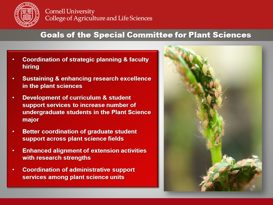 Goals of the Special Committee for Plant Sciences Coordination of strategic planning & faculty hiringCoordination of strategic planning & faculty hiri
