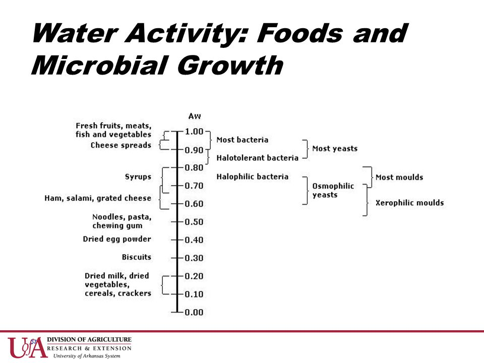 37 Water Activity: Foods and Microbial Growth
