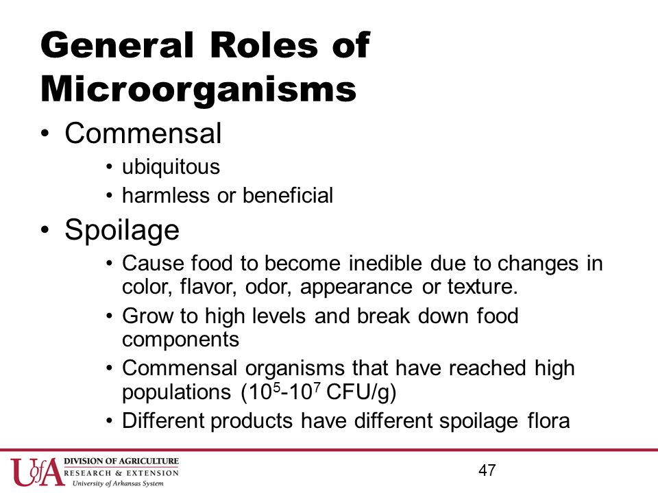 General Roles of Microorganisms Commensal ubiquitous harmless or beneficial Spoilage Cause food to become inedible due to changes in color, flavor, od