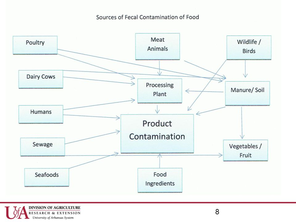Controlling Growth SUMMARY: Microorganisms can grow on food and in the environment under the right conditions Remember F-A-T-T-O-M –Food, Acidity, Temperature, Time, Oxygen, and Moisture 39