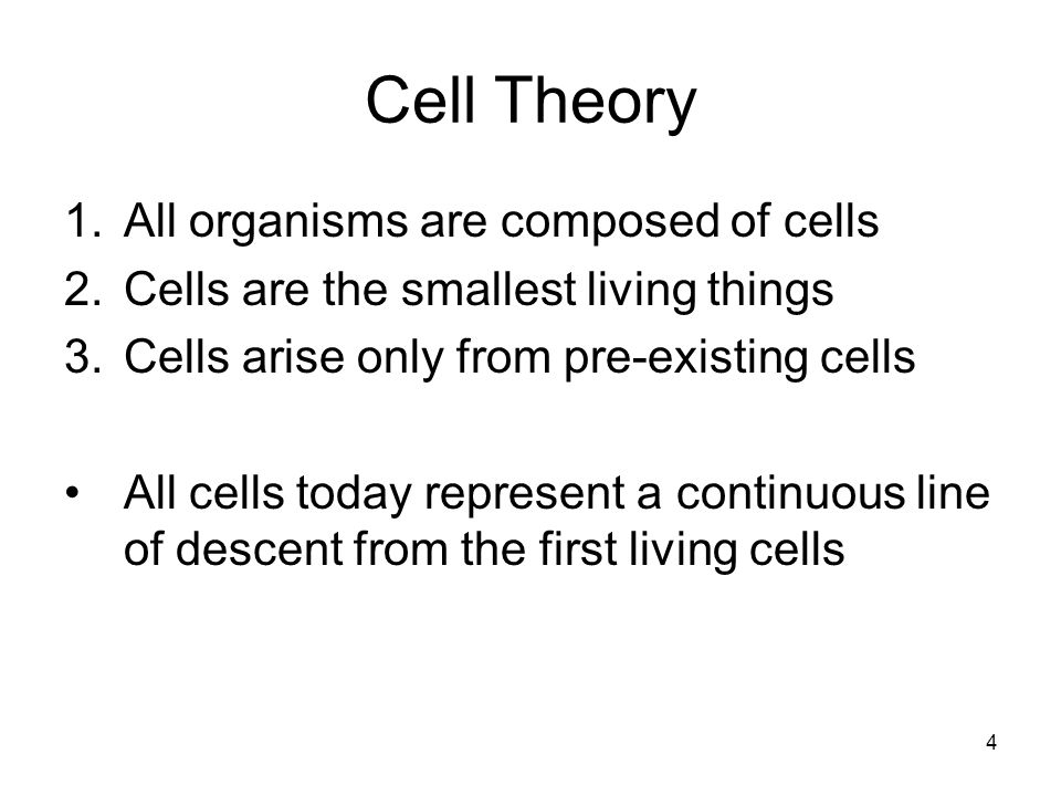 4 Cell Theory 1.All organisms are composed of cells 2.Cells are the smallest living things 3.Cells arise only from pre-existing cells All cells today represent a continuous line of descent from the first living cells