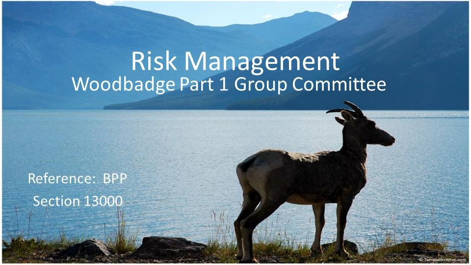 Risk Management Woodbadge Part 1 Group Committee Reference: BPP Section 13000