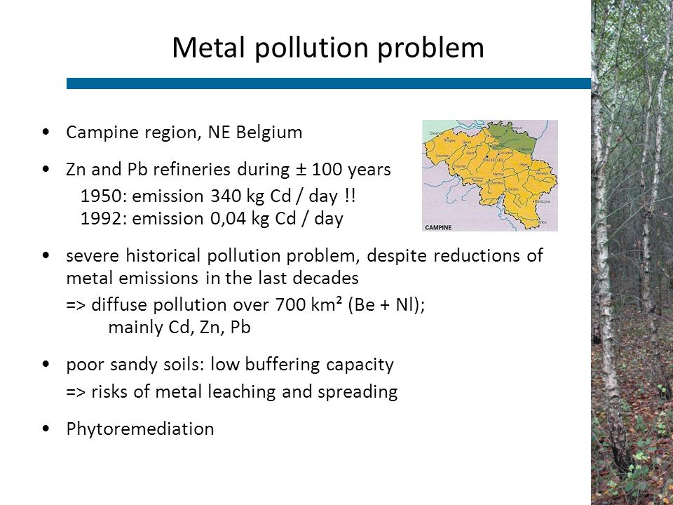 Campine region, NE Belgium Zn and Pb refineries during ± 100 years 1950: emission 340 kg Cd / day !! 1992: emission 0,04 kg Cd / day severe historical