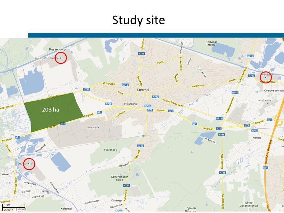 Study site 203 ha