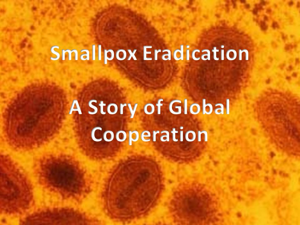Smallpox is a horrifying and deadly disease that had plagued humanity for thousands of years.