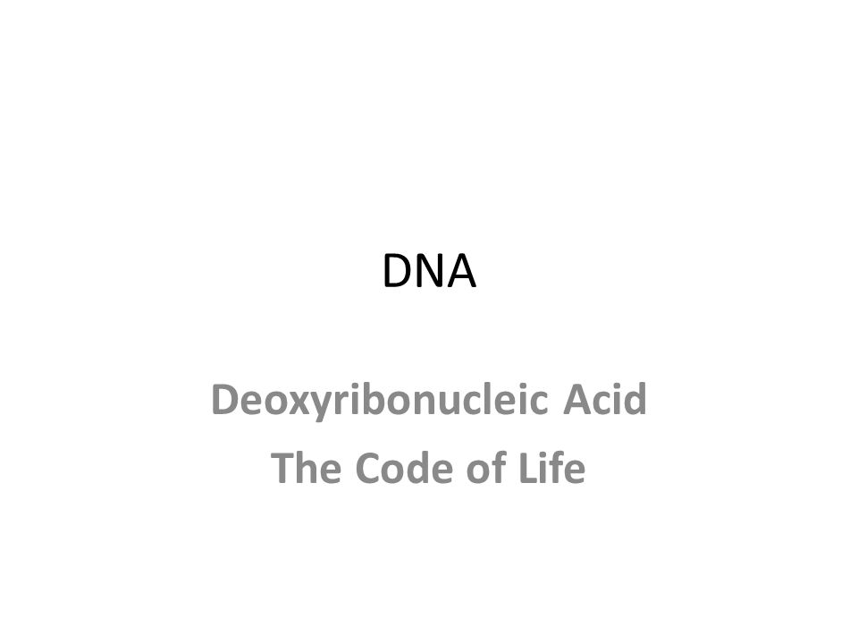DNA Deoxyribonucleic Acid The Code of Life