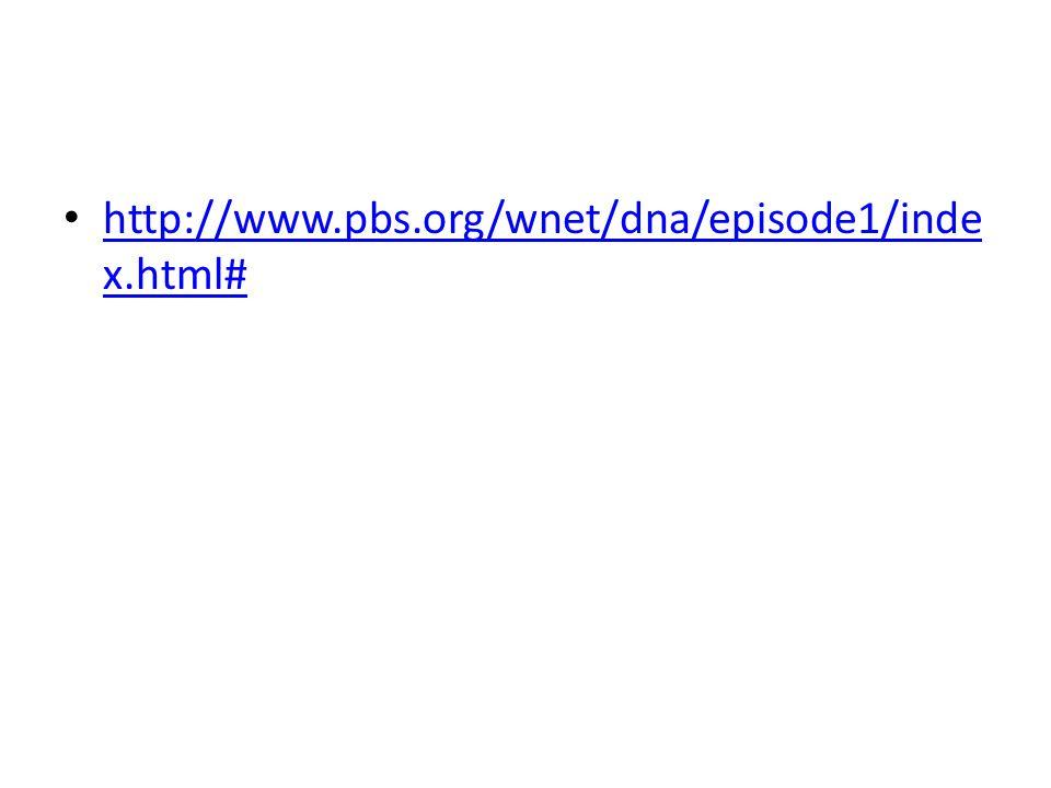 http://www.pbs.org/wnet/dna/episode1/inde x.html# http://www.pbs.org/wnet/dna/episode1/inde x.html#