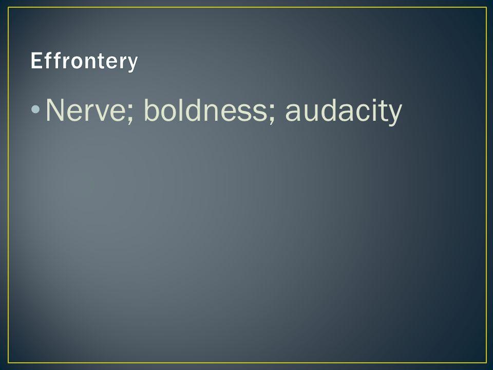 Nerve; boldness; audacity