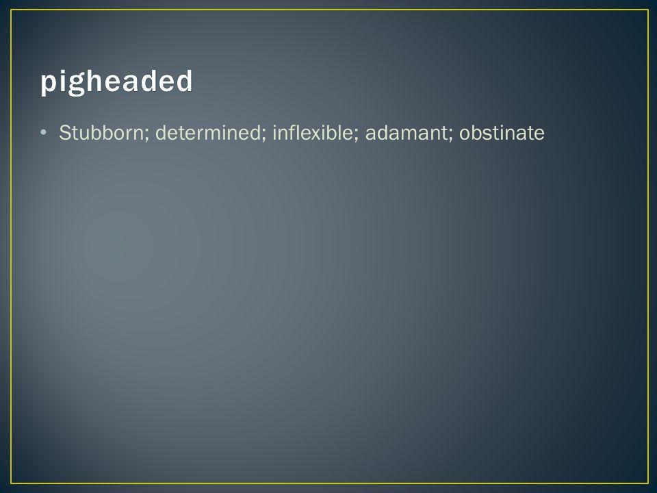 Stubborn; determined; inflexible; adamant; obstinate