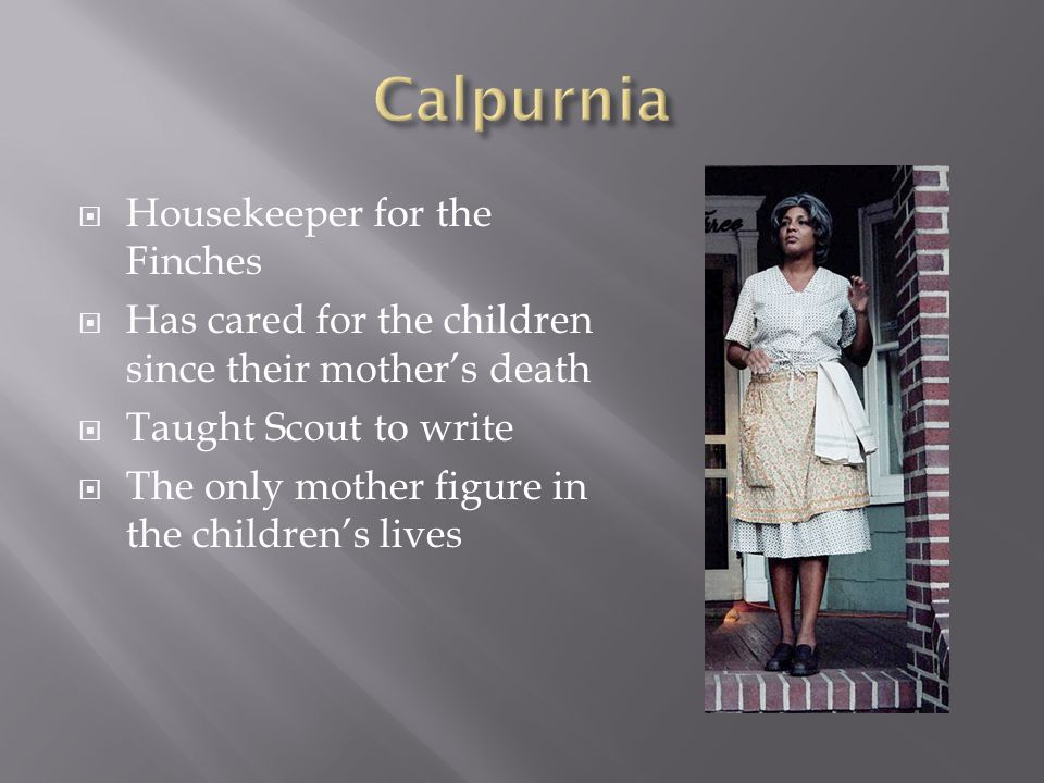  Housekeeper for the Finches  Has cared for the children since their mother's death  Taught Scout to write  The only mother figure in the children