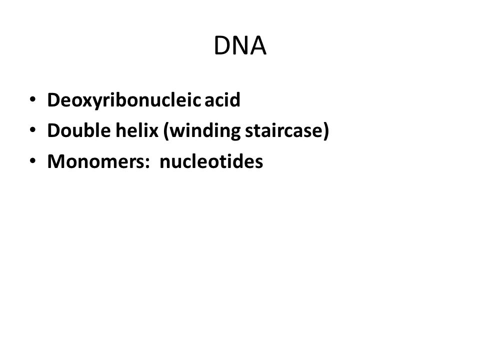 DNA Deoxyribonucleic acid Double helix (winding staircase) Monomers: nucleotides