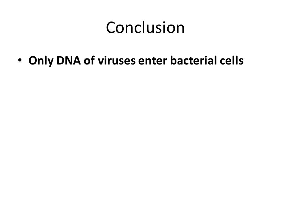 Conclusion Only DNA of viruses enter bacterial cells