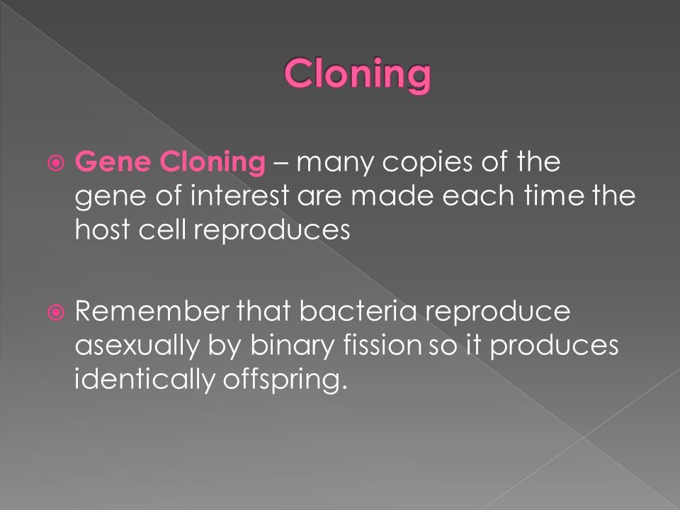  Gene Cloning – many copies of the gene of interest are made each time the host cell reproduces  Remember that bacteria reproduce asexually by binar