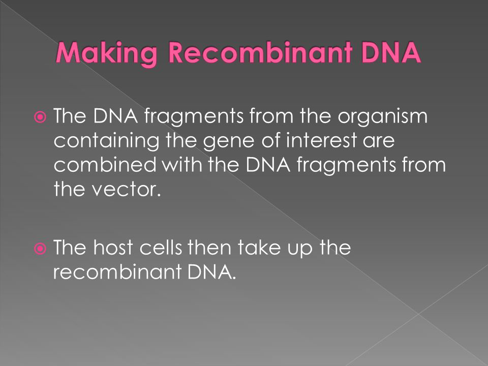  The DNA fragments from the organism containing the gene of interest are combined with the DNA fragments from the vector.  The host cells then take