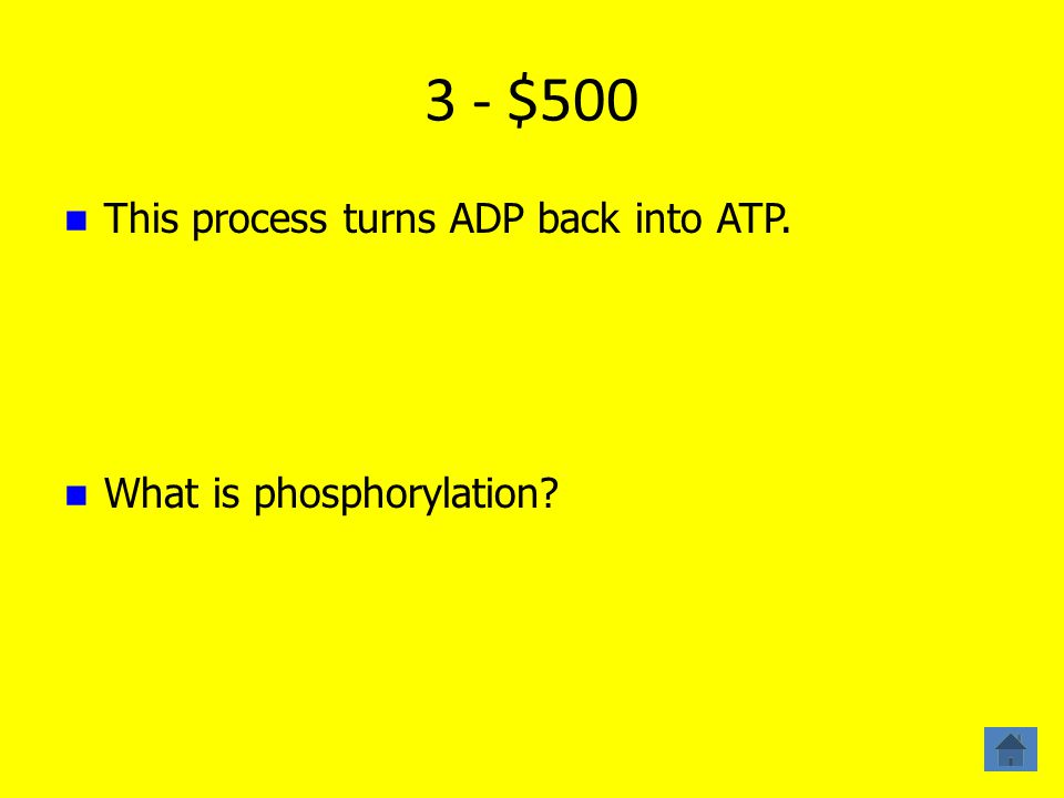 3 - $400 This metabolic pathway requires energy to build up larger molecules. What is anabolism?