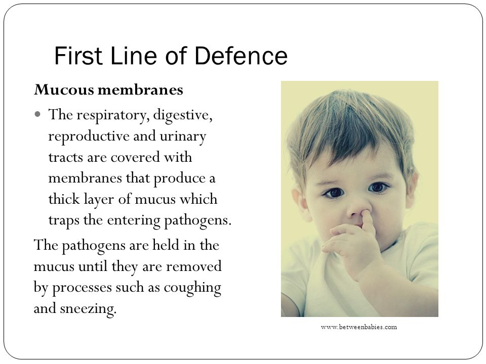 First Line of Defence Mucous membranes The respiratory, digestive, reproductive and urinary tracts are covered with membranes that produce a thick layer of mucus which traps the entering pathogens.