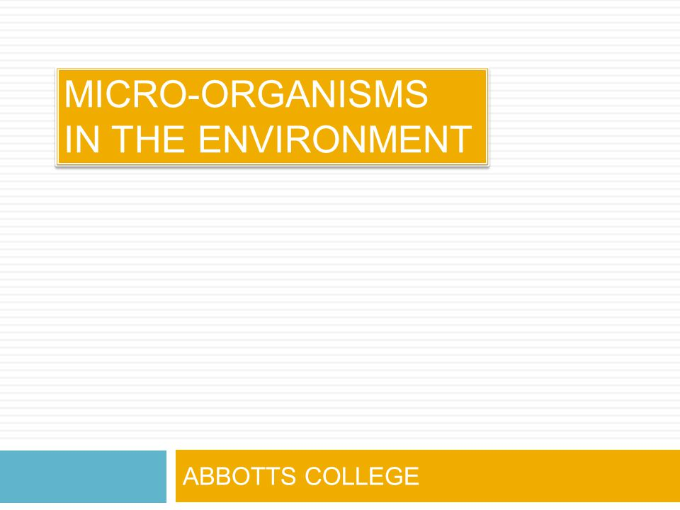MICRO-ORGANISMS IN THE ENVIRONMENT ABBOTTS COLLEGE