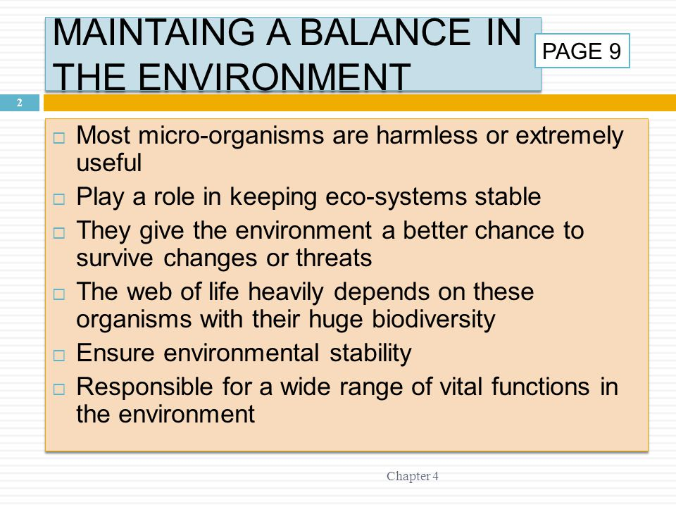 MAINTAING A BALANCE IN THE ENVIRONMENT Chapter 4 2  Most micro-organisms are harmless or extremely useful  Play a role in keeping eco-systems stable  They give the environment a better chance to survive changes or threats  The web of life heavily depends on these organisms with their huge biodiversity  Ensure environmental stability  Responsible for a wide range of vital functions in the environment  Most micro-organisms are harmless or extremely useful  Play a role in keeping eco-systems stable  They give the environment a better chance to survive changes or threats  The web of life heavily depends on these organisms with their huge biodiversity  Ensure environmental stability  Responsible for a wide range of vital functions in the environment PAGE 9