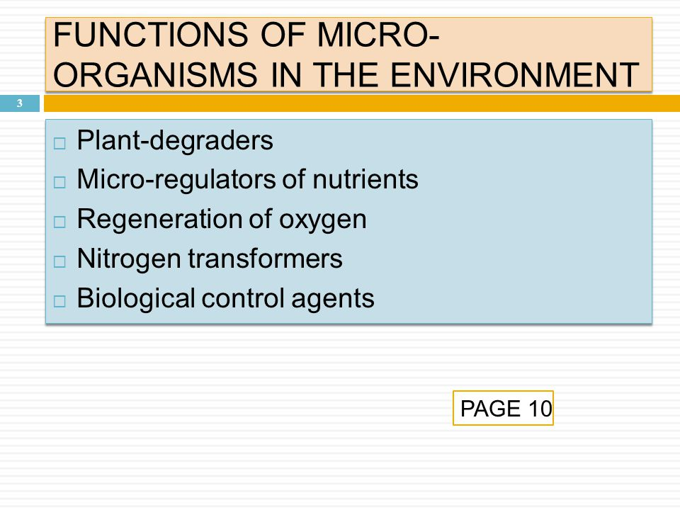 FUNCTIONS OF MICRO- ORGANISMS IN THE ENVIRONMENT 3  Plant-degraders  Micro-regulators of nutrients  Regeneration of oxygen  Nitrogen transformers  Biological control agents  Plant-degraders  Micro-regulators of nutrients  Regeneration of oxygen  Nitrogen transformers  Biological control agents PAGE 10