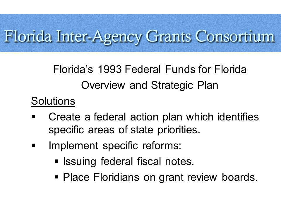 Florida's 1993 Federal Funds for Florida Overview and Strategic Plan Solutions  Create a federal action plan which identifies specific areas of state priorities.