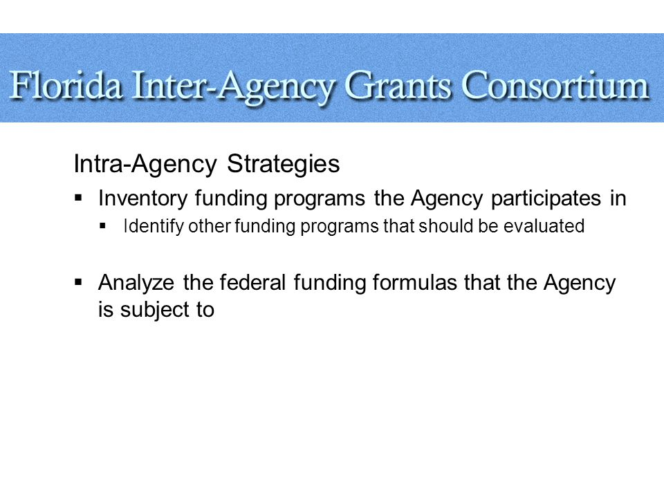Intra-Agency Strategies  Inventory funding programs the Agency participates in  Identify other funding programs that should be evaluated  Analyze the federal funding formulas that the Agency is subject to