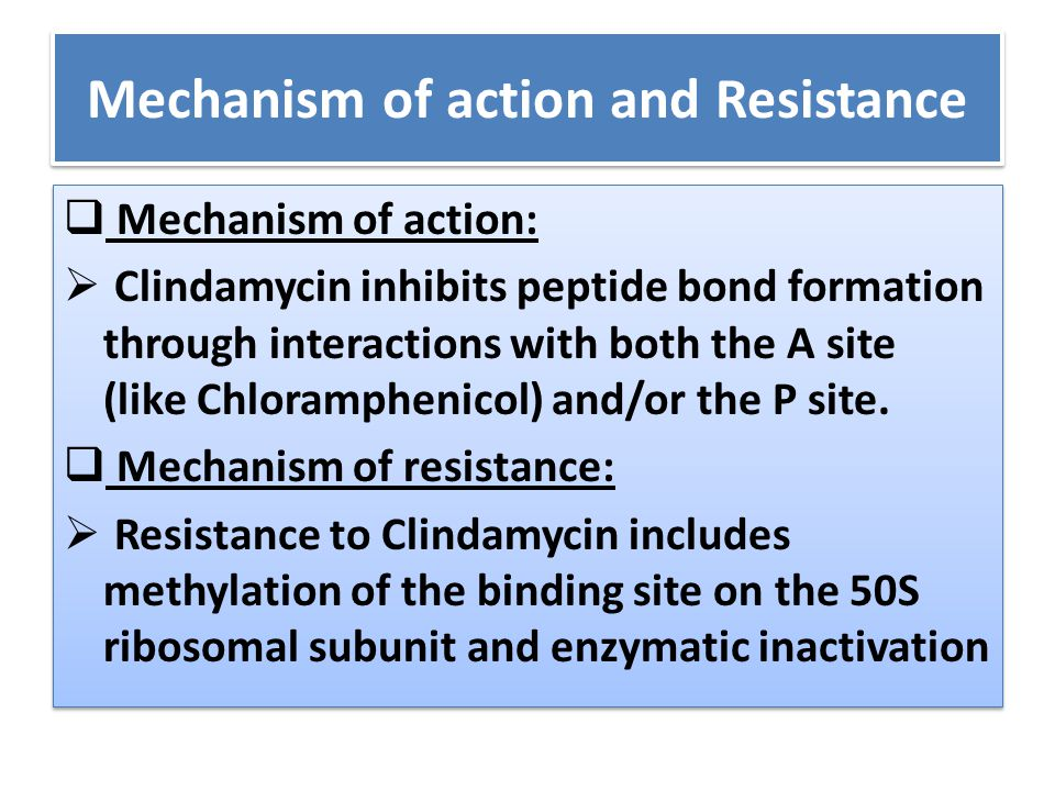 Mechanism of action and Resistance  Mechanism of action:  Clindamycin inhibits peptide bond formation through interactions with both the A site (lik