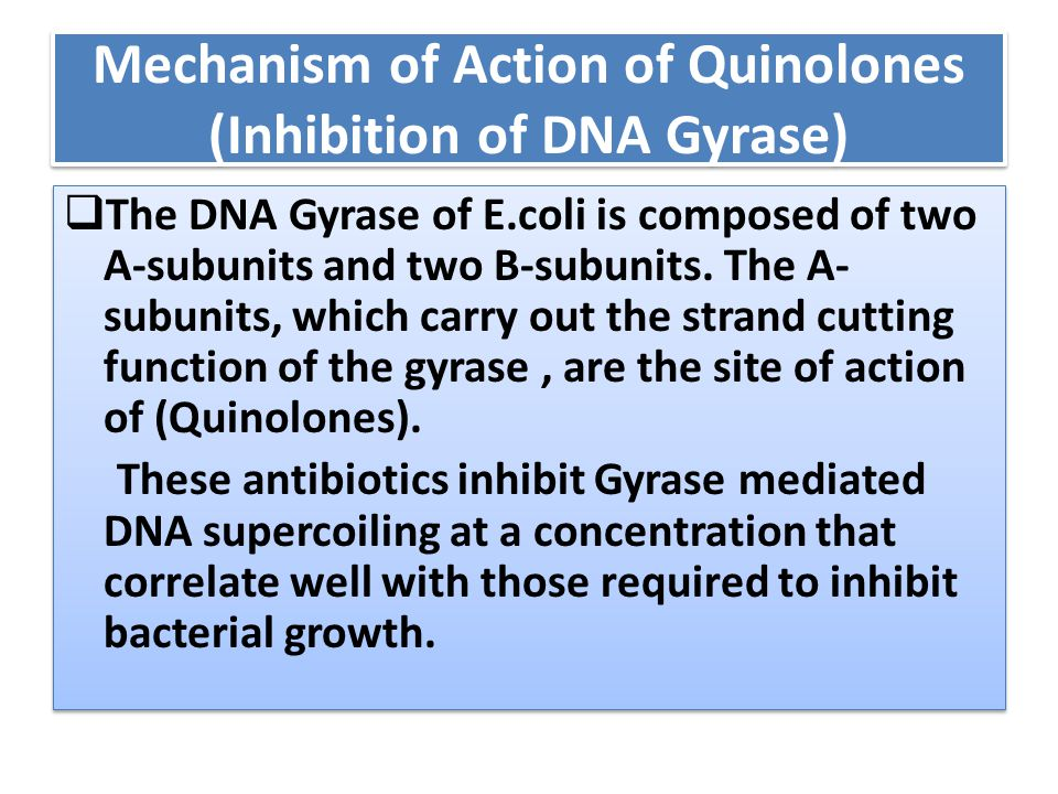 Mechanism of Action of Quinolones (Inhibition of DNA Gyrase)  The DNA Gyrase of E.coli is composed of two A-subunits and two B-subunits. The A- subun
