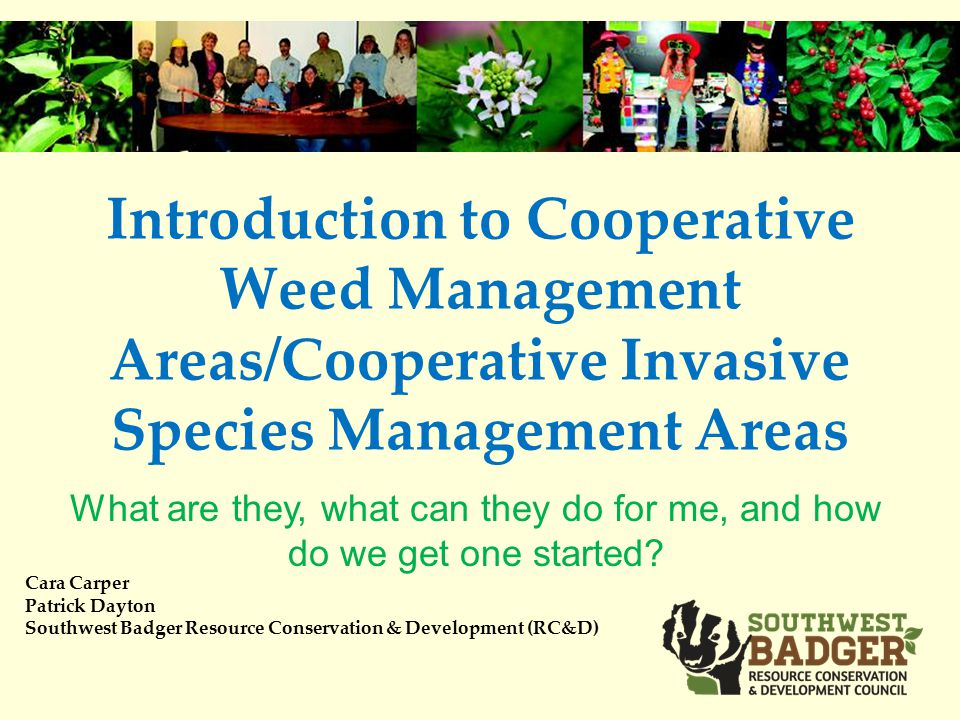 Introduction to Cooperative Weed Management Areas/Cooperative Invasive Species Management Areas Cara Carper Patrick Dayton Southwest Badger Resource Conservation & Development (RC&D) What are they, what can they do for me, and how do we get one started