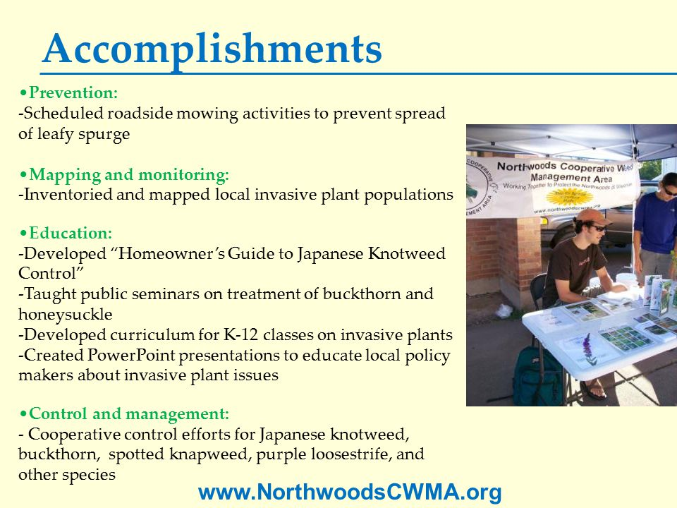 www.NorthwoodsCWMA.org Accomplishments Prevention: -Scheduled roadside mowing activities to prevent spread of leafy spurge Mapping and monitoring: -Inventoried and mapped local invasive plant populations Education: -Developed Homeowner's Guide to Japanese Knotweed Control -Taught public seminars on treatment of buckthorn and honeysuckle -Developed curriculum for K-12 classes on invasive plants -Created PowerPoint presentations to educate local policy makers about invasive plant issues Control and management: - Cooperative control efforts for Japanese knotweed, buckthorn, spotted knapweed, purple loosestrife, and other species