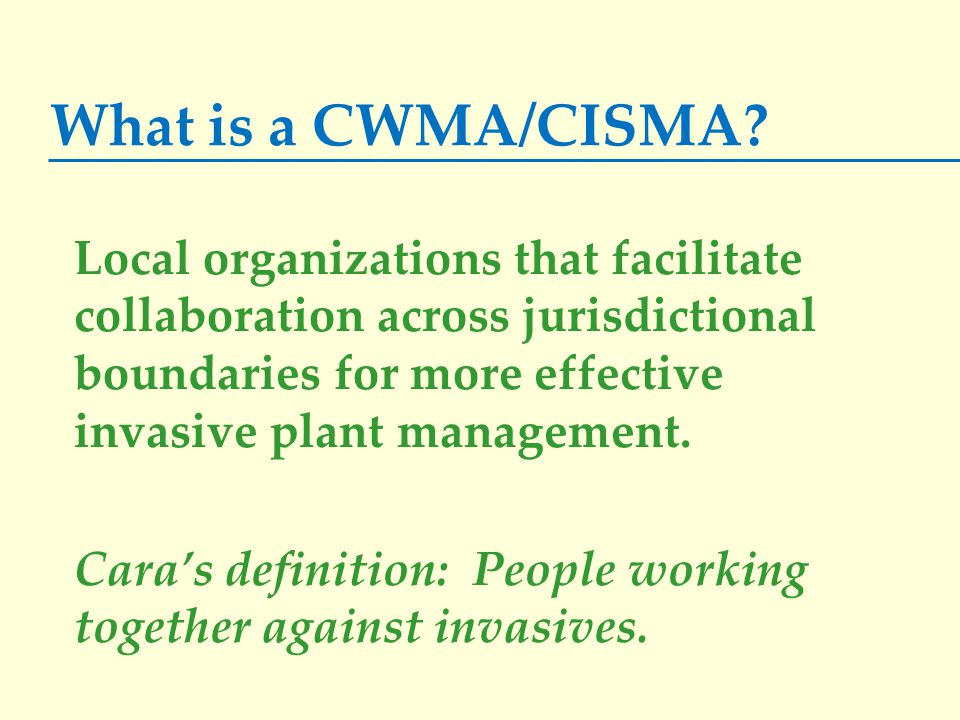 What is a CWMA/CISMA.
