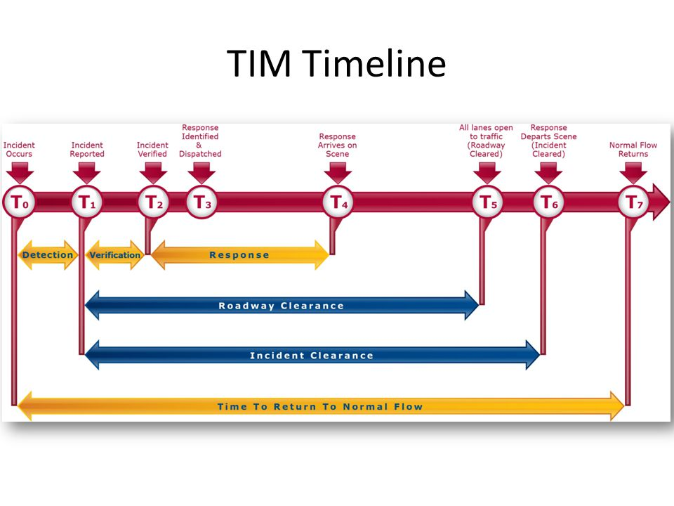 TIM Timeline 9