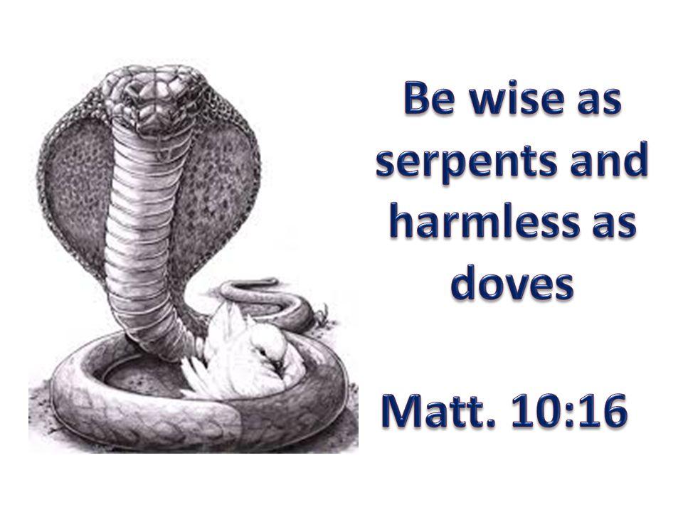 Wise as Serpents Keen awareness of one's surroundings – true nature of things PHRONIMOS – prudence or practical wisdom (Matt.