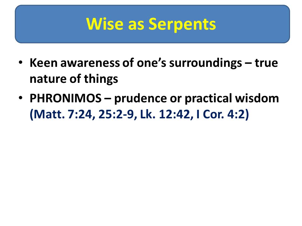 Wise as Serpents Keen awareness of one's surroundings – true nature of things PHRONIMOS – prudence or practical wisdom (Matt.