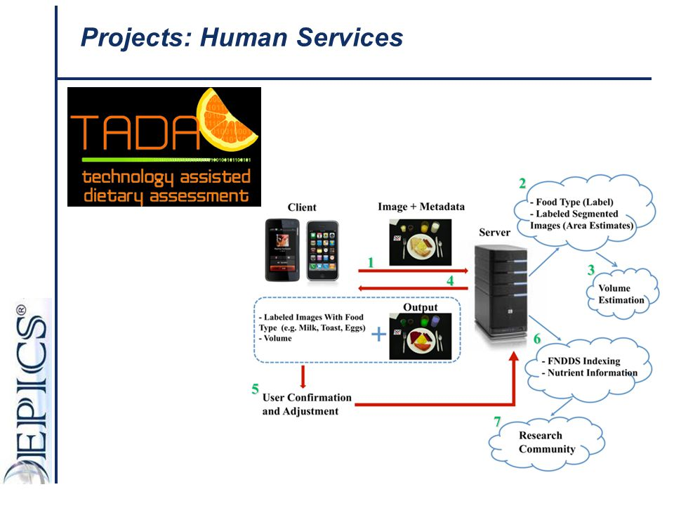 Projects: Human Services