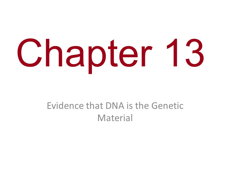 Chapter 13 Evidence that DNA is the Genetic Material