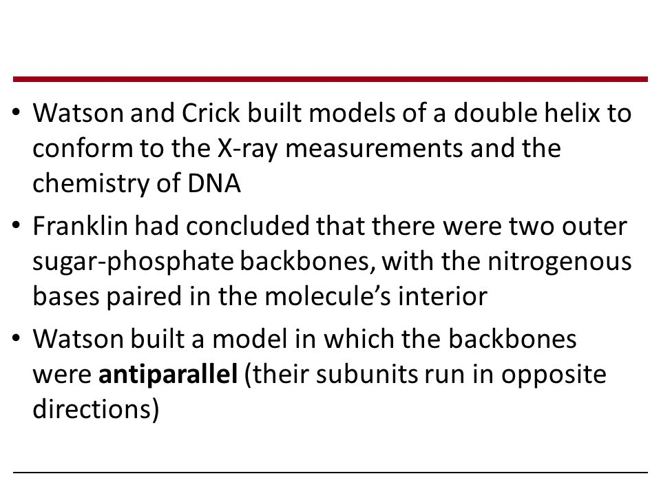 Watson and Crick built models of a double helix to conform to the X-ray measurements and the chemistry of DNA Franklin had concluded that there were t