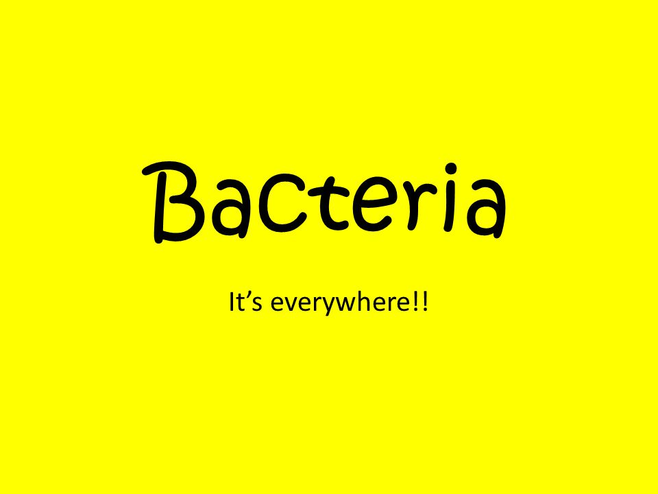 Bacteria It's everywhere!!