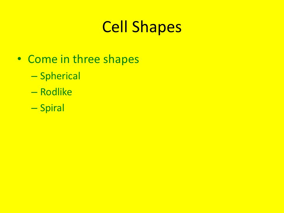 Cell Shapes Come in three shapes – Spherical – Rodlike – Spiral