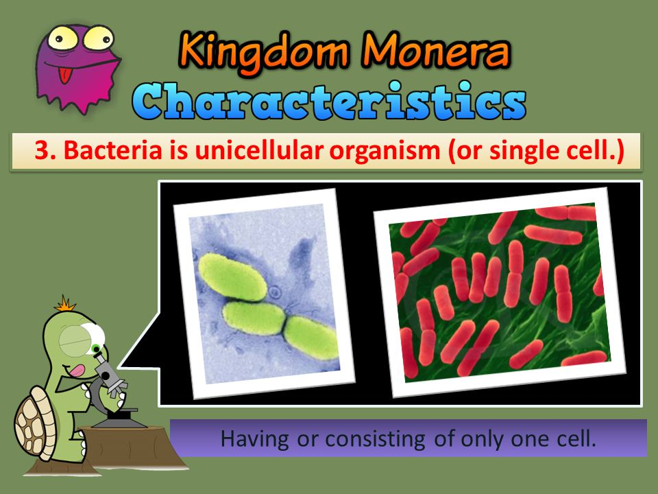 4.Bacteria can move freely from one place to another.