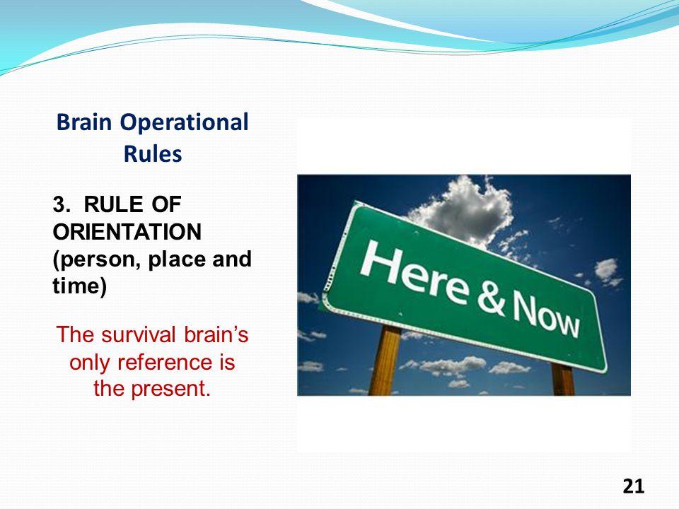 Brain Operational Rules 3.