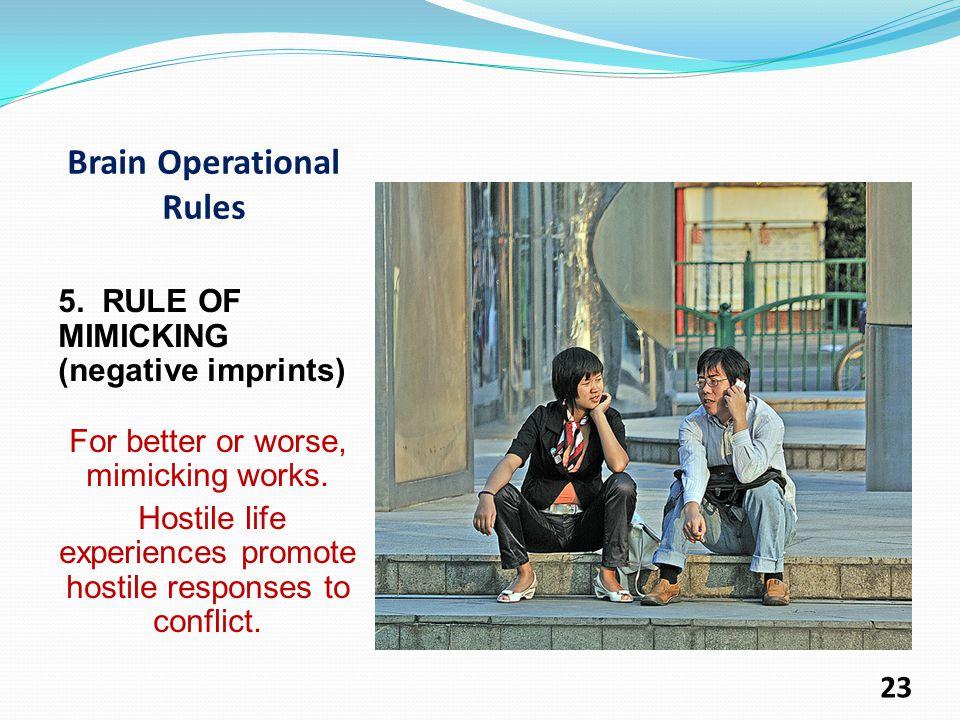 Brain Operational Rules 5.