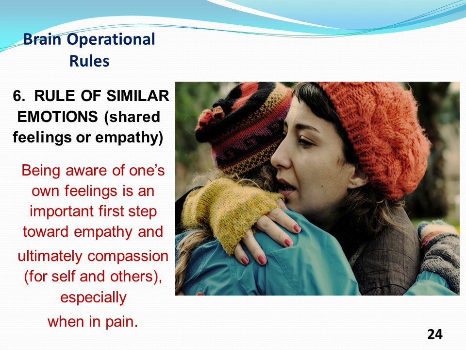Brain Operational Rules 6.